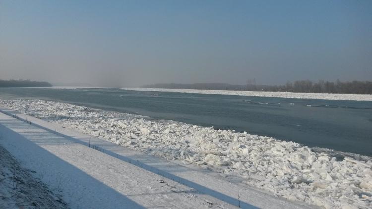 1.maj Dunav